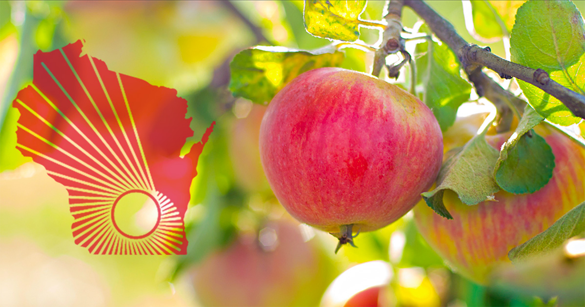 WARF logo over photo of apples hanging on a tree on a sunny day
