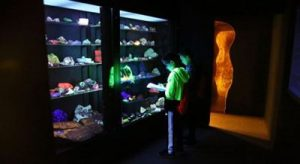 Two children examine fluorescent rocks and minerals in a case