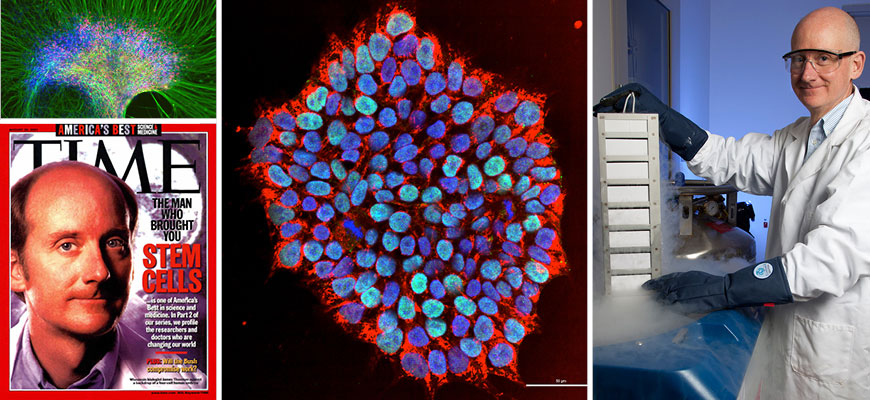 Collage of images of James Thomson and stem cells