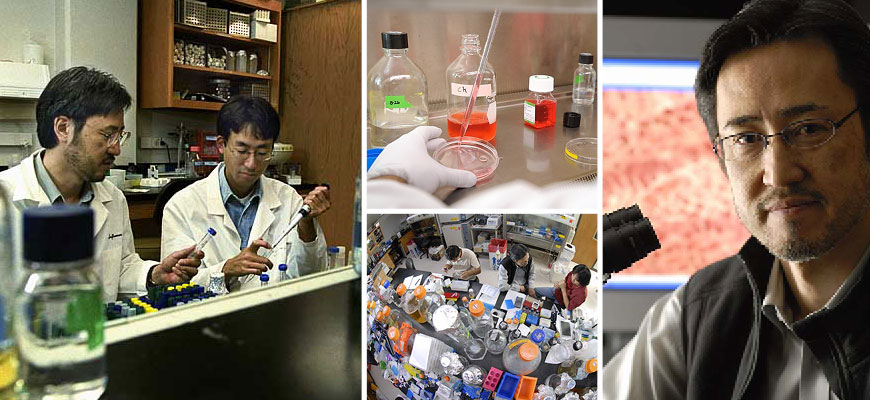 Collage of images of Yoshi Kawaoka working in a lab