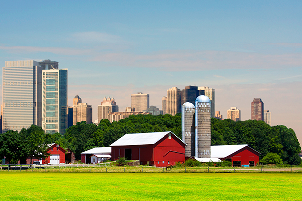 Farm and pasture with cityscape skyline in background